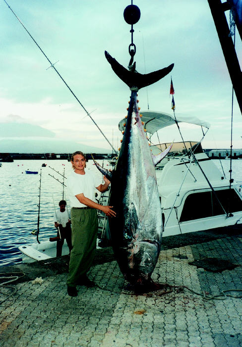 Giant bluefin tuna photo - 814 lns - Azores