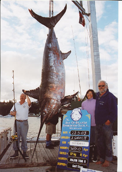 photo of pending world record swordfish - 813 lbs. - Bay of Islands, New Zealand