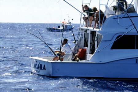 Photo of Xacara tuna fishing - Azores
