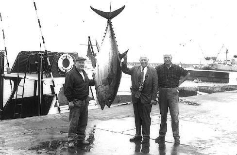 World record bigeye tuna photo - 295 lbs - Azores