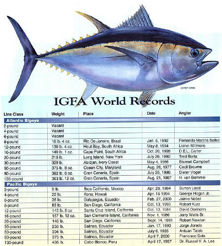 IGFA World Records for Bigeye Tuna