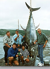 Giant bluefin tuna photo 1002 lbs Azores