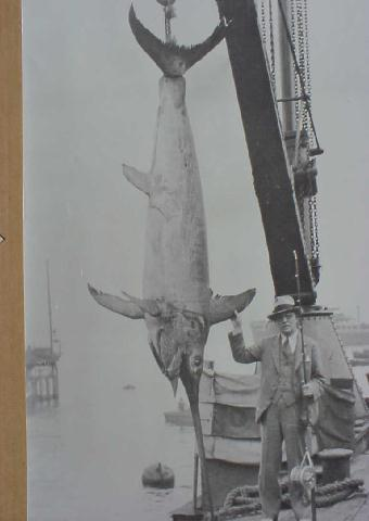 photo of George Garey and a massive swordfish caught in Chile