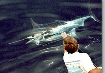 Blue marlin photo - tag and release